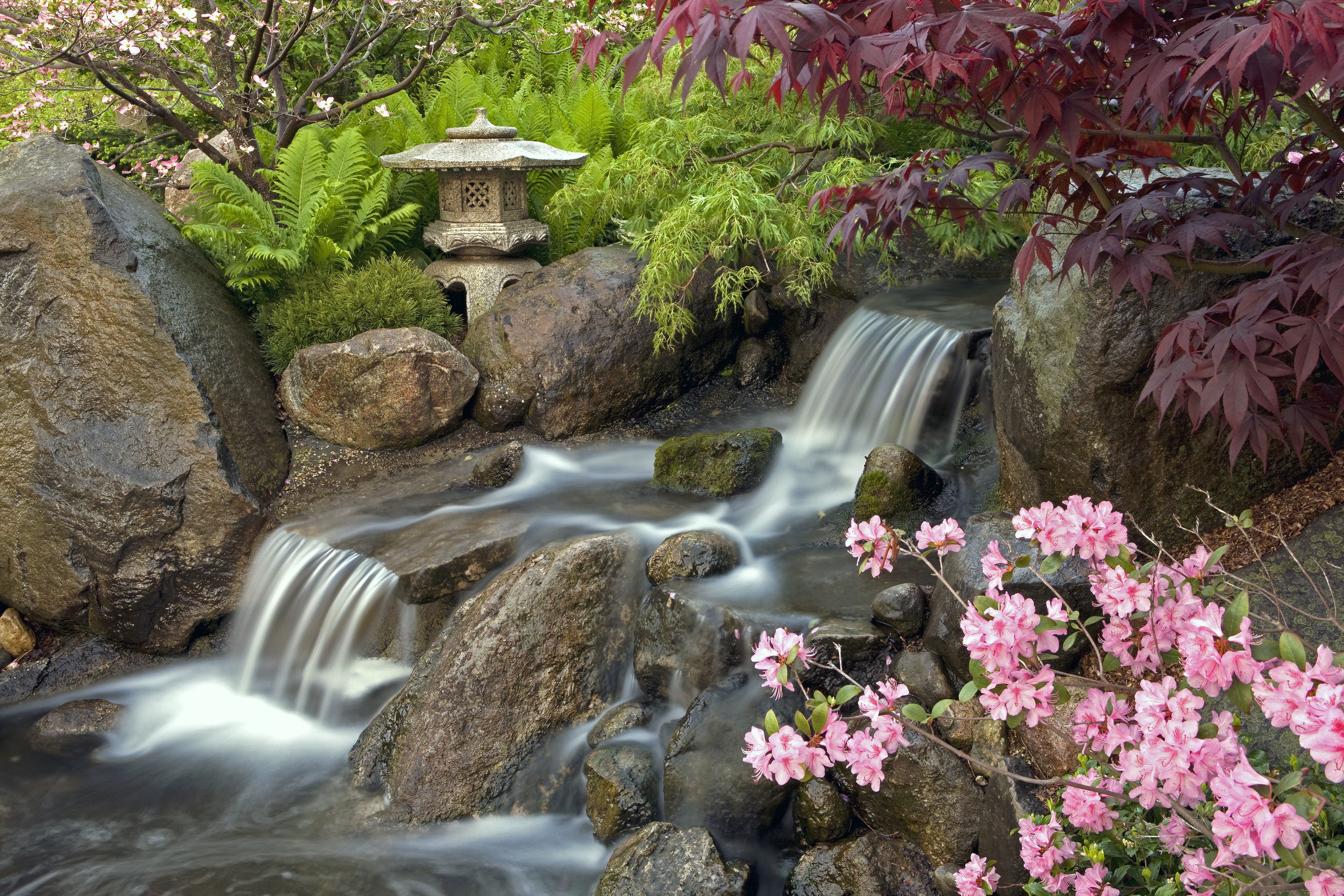 Anderson japanese gardens anderson japanese gardens for Garden waterfall