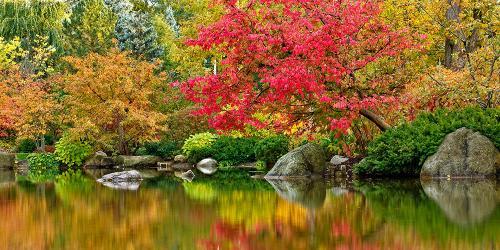 GardenPhotos_GardenOfReflectionPond_Autumn