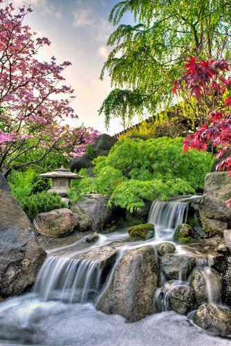 GardenPhotos_Waterfall_Spring